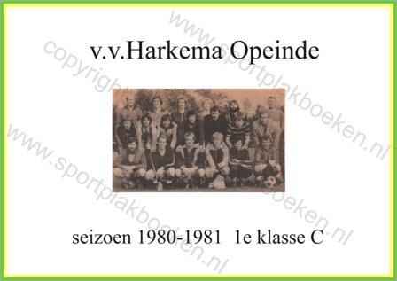 seizoen 1980-1981